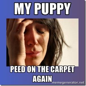 puppy pee drama